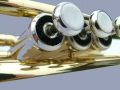 Trumpets, cornets, flugel horns, trombones, tubas, euphoniums, French horns